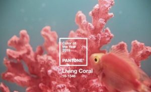 Pantone announced the 2019 color of the year as Living Coral